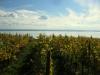 Badacsony és Balaton